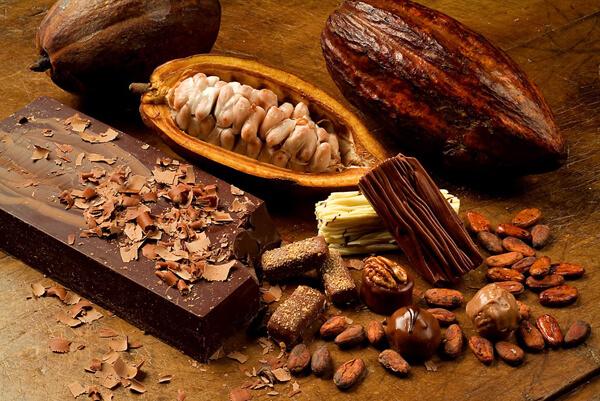 chocolate e beneficios
