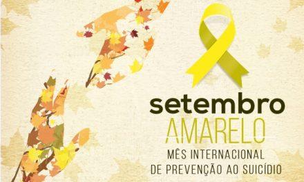 Setembro Amarelo, Suicídio